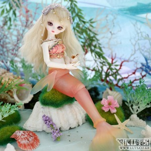 娃娃 Honey31 Delf MERMAID MERMAN ver Pink Limited