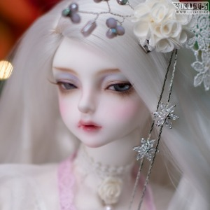娃娃 Model Delf ANN Romance ver. Head Limited