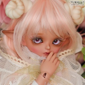 娃娃 Honey31 Delf ANI Elf ver. FAIRY FOREST Limited
