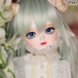 娃娃 Honey31 Delf PRING Elf ver. Head Limited
